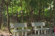 Cần bán đất chính chủ gần chùa Hưng Phúc 51m2