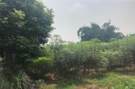 Bán gấp đất Cổ Đông- Sơn Tây- Hà Nội, DT 2000m2, gần khu công nghệ cao Láng- Hòa Lạc, giá 5tr/m2.