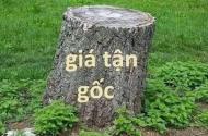 Chính chủ bán gấp 3 lô đất đẹp Minh Khai, Bắc Từ Liêm ngõ trước nhà 2,6m giá chỉ từ 33.5tr/m2