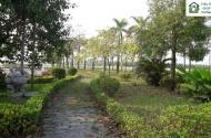 Bán biệt thự Vườn Cam, cơ hội vẫn còn cho nhà đầu tư thông thái