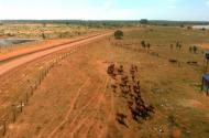 Bán đất trồng cây giá siêu rẻ 3000m2 chỉ 150 triệu