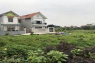 Chính chủ bán đất phân lô tại thôn Phú Lương, Tân Minh, Thường Tín, Hà Nội