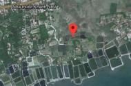 Cần bán lô đất Bắc Vân Phong 1600 m2 đất trồng cây