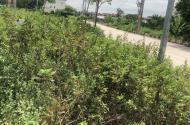 Bán đất Đặng Xá Gia Lâm, đường oto,DT45.2m2, giá rẻ nhất thị trường chỉ 1.035tỷ