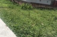 Bán đất Đặng xá Gia Lâm, đường 4,5m, giá chỉ nhỉnh 1 tỷ, DT42m2.mặt tiền 4m