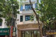 Mặt phố Tràng Thi Hoàn Kiếm kd cho thuê cực tốt xây sẵn 8 tầng 100m2 mt 9m giá 62 tỷ