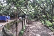 Bán đất thổ cư tại Đại Thành Quốc Oai diện tích 60m2 ô tô vào tận nơi