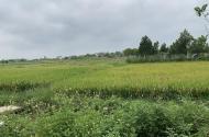 đất đẹp đường 8m bắc thượng - quang tiến - sóc sơn, giá 7 triệu/m2. LH - 0818250790