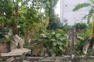 Hàng nóng chỉ 800tr có ngay lô đất 65m2 MT 4.2m Thôn Đoài, Phú Minh đường 4.5m ngõ thông