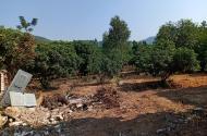 Chính chủ bán gấp đất xây dựng nghỉ dưỡng mặt hồ Phú Nghĩa, Minh Phú 1800m2