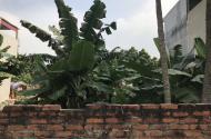 Bán đất kinh doanh gần KCN Nội Bài giá siêu rẻ - LH 0867549968