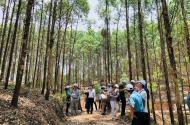 Chương trình đầu tư phát triển kinh tế đem lại lợi nhuận cao làm xanh đất nước