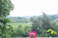 Bán trang trại nhà vườn 3634m2 view cánh đồng cực đẹp,giá rẻ tại Lương Sơn Hòa Bình
